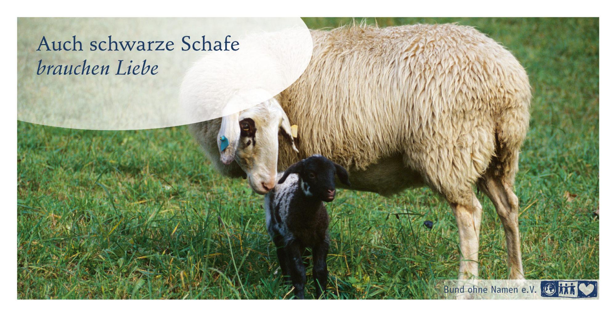 Auch schwarze Schafe brauchen Liebe
