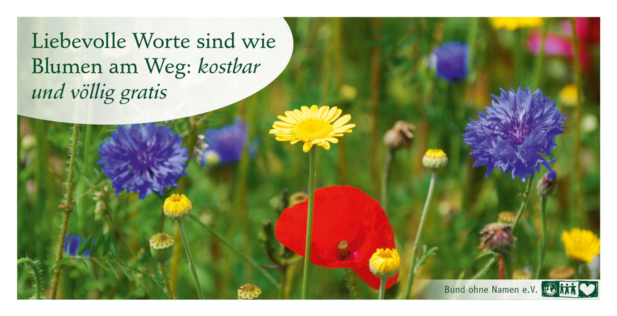 Liebevolle Worte sind wie Blumen am Weg: kostbar und völlig gratis